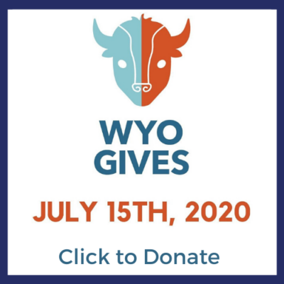 WyoGives logo featuring a dual-toned buffalo head in light blue and burnt orange.